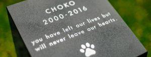 shikaku_05